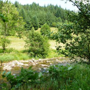 4 Tage Bayrischer Wald mit All Inclusive & Specials für nur 94,50 € p.P. (1 Kind bis 6 Jahre frei)