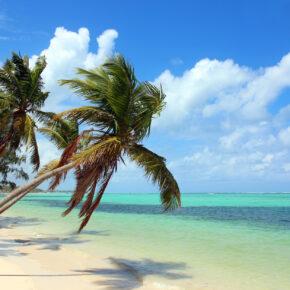Punta Cana: 9 Tage Dom Rep All Inclusive im 4* Hotel inkl. Flug & Transfer nur 599€