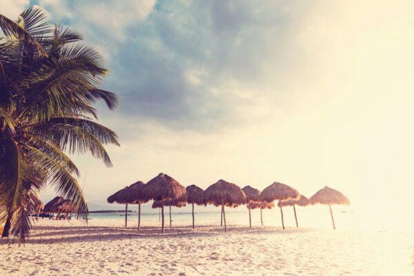 Mexiko Strand mit Palmen