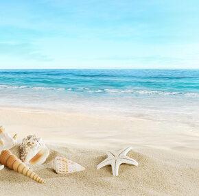 1 Woche Tunesien, 4.5* Hotel, HP, Flug u. Transfer nur 226 €