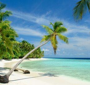 Jamaika: 9 Tage mit 3* Hotel, Transfer & Flug nur 483€