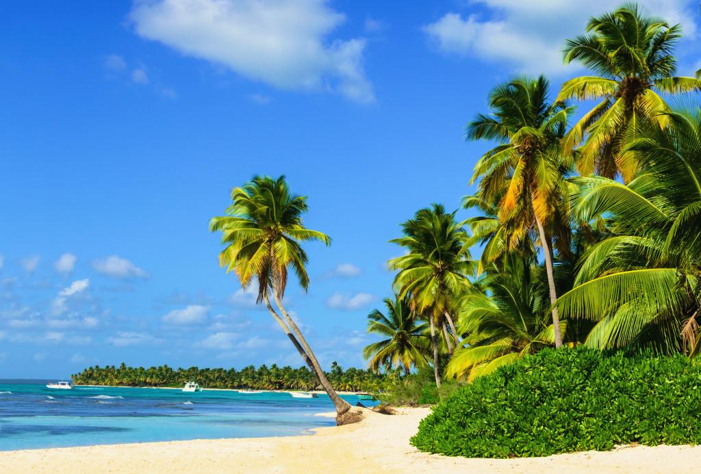 Barbados Karibik Traum-Strand