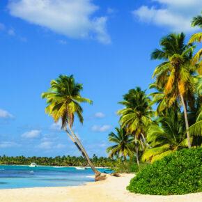 Barbados Karibik Warm im Winter