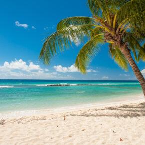 Ab in die Karibik: Flüge nach Barbados & Grenada mit Gepäck nur 431€