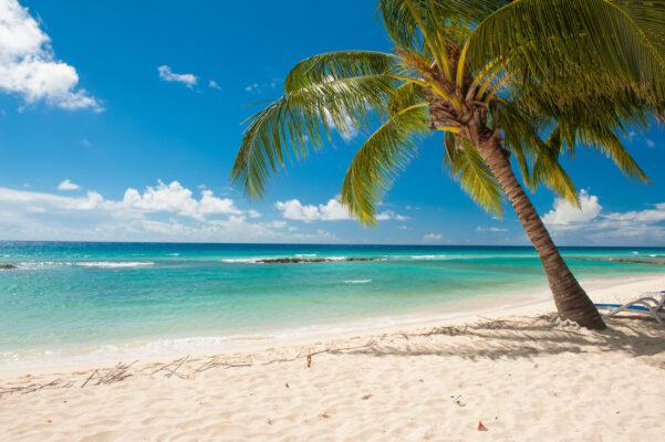 Barbados am Strand