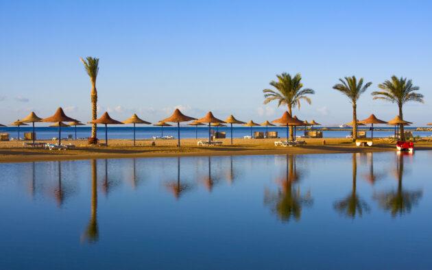 Ägypten Strand mit Kakteen