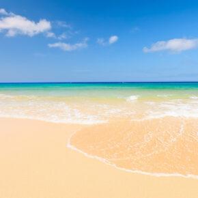 Schnäppchen für Fuerteventura: 7 Tage im Apartment inkl. Pool, Flug, Transfer & Zug nur 198€