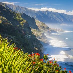 Backpacking Single Reise nach Madeira inkl. Flug, Hotel & Frühstück nur 275 €