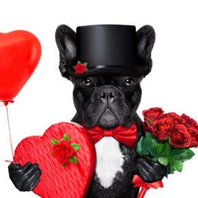Schnäppchen für den Valentinstag ab 79 €