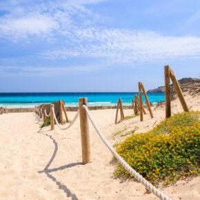 8 Tage Mallorca im guten Strandapartment mit Meerblick inkl. Flug nur 82€