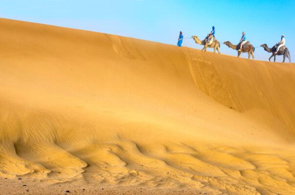 Tunsien mit Kamelen in der Wüste