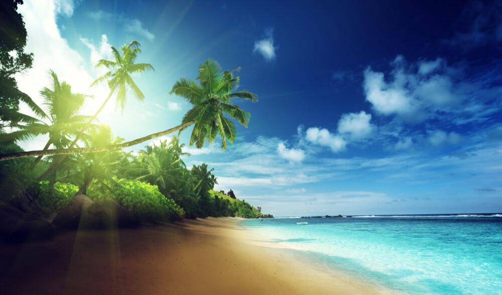 Pin strand traumstrand karibik palme s dsee meer sy kairos for Design hotel karibik