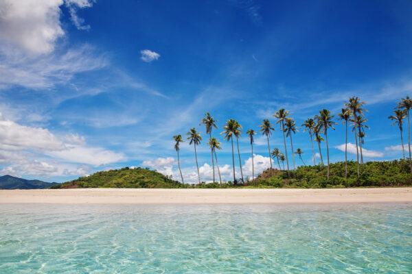 Traumstrand mit Palmen in der Karibik