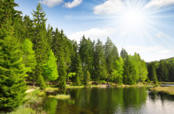 Bayerischer Wald All Inclusive: 4 Tage im 3* Hotel mit All Inclusive ab 99€