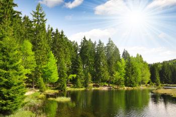 Wochenende im Bayerischen Wald: 4 Tage im 3* Hotel mit Ultra All Inclusive & Wellness ab 99€