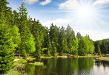 Bayerischer Wald All Inclusive: 4 Tage im 3* Hotel mit All Inclusive & Wellness ab 139€