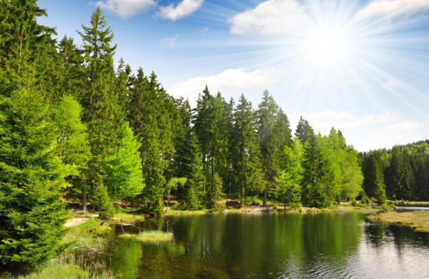 Bayrischer Wald Kleiner Arber See Lohberg