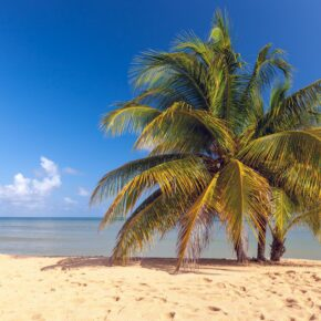 Karibik Klima auf Jamaika
