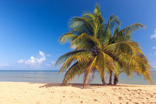 Karibik Strand auf Jamaika