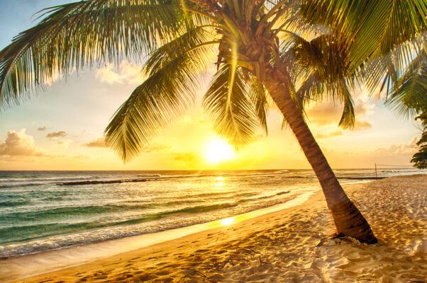 Jamaika Sonnenuntergang