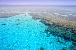 Luxus in Ägypten: 7 Tage im 5* Hotel mit All Inclusive, Flug & Transfer nur 384€