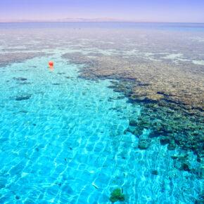 August in Sharm El Sheikh: 1 Woche im 4* Hotel mit Halbpension nur 359 € inkl. Flug