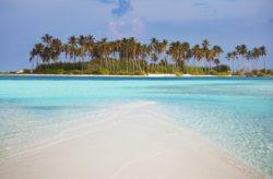 Karibik-Traum: 9 Tage Bonaire im TOP 3* Hotel mit Flug & Transfer nur 499€