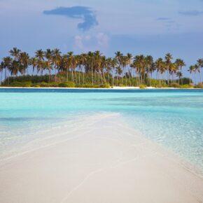 Bonaire: 9 Tage Karibik-Entspannung mit Flug, Transfer & TOP Apartment für nur 499€