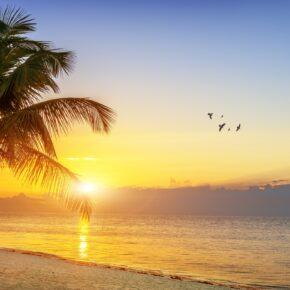 9 Tage Florida-Reise mit Flug & TOP 3* Hotel nur 398 €