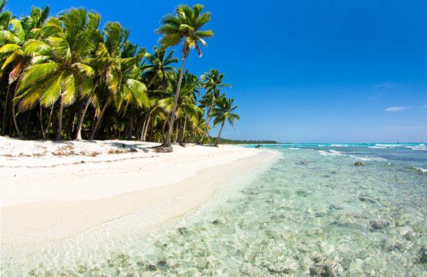 Mauritius Strand mit Palmen