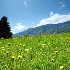 3 Tage Steiermark: Wellness- & Aktivurlaub im 3* Hotel ink. Frühstück nur 89 €