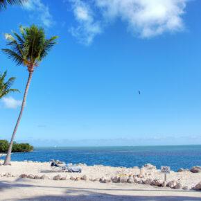 9 Tage Florida inkl. TOP Hotel & Flug nur 333€