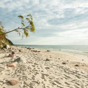 Wellness direkt an der Ostsee: 3 Tage im 5* Hotel mit Frühstück ab 55€