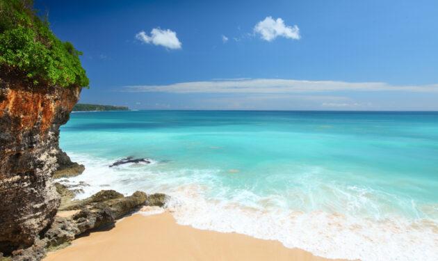 Bali tropischer Strand Angebot