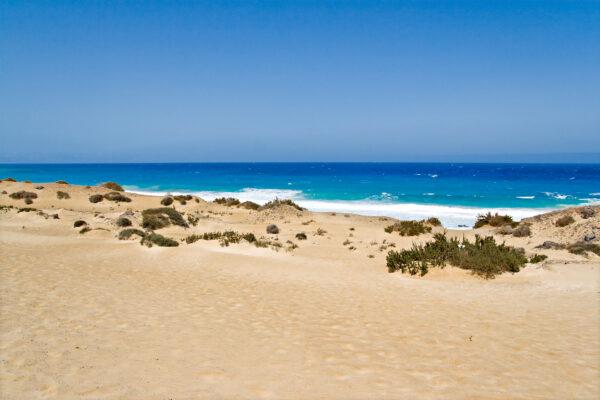 Stand Fuerteventura