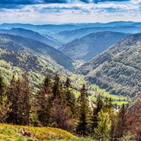 Himmlisch: 3 Tage Schwarzwald im TOP 3* Hotel inkl. Halbpension und SPA für 169€