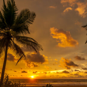 11 Tage Sri Lanka im 4.5* Hotel inkl. Frühstück, Flug & Zug für nur 739 €
