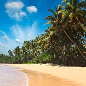 Error Fare Alert: Sri Lanka oder Indonesien hin- und Rückflug ab 137 € VORBEI