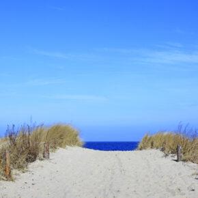 Kurzurlaub Usedom: 3 Tage im TOP 4* Villen im Park mit Frühstück & Wellness ab 89€