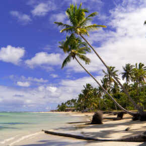 14 Tage Dominikanische Republik im TOP 4.5* All Inclusive Hotel mit Flug, Transfer & Zug nur 887€ // 7 Tage 641€