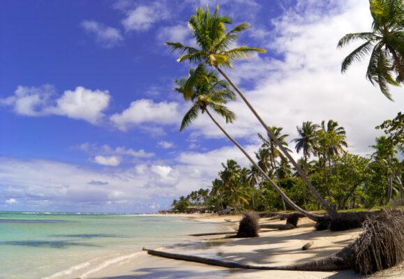 Samana Beach Dom Rep