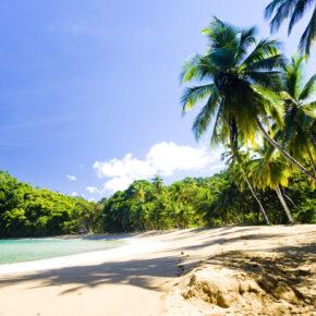 Karibik: 15 Tage Tobago im guten Hotel mit Meerblick & Flug nur 668€