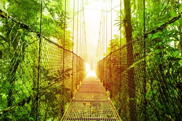 Costa Rica Bruecke