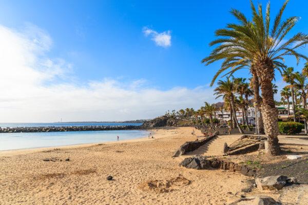 Lanzarote Playa Blanca Palme