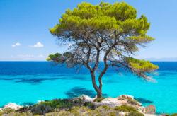 Low Budget: 8 Tage Griechenland im 3* Hotel in Chalkidiki mit Flug nur 128€