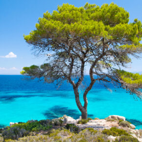 Griechenland: 6 Tage Chalkidiki im TOP 5* Luxus-Hotel mit Vollpension & Flug nur 238€