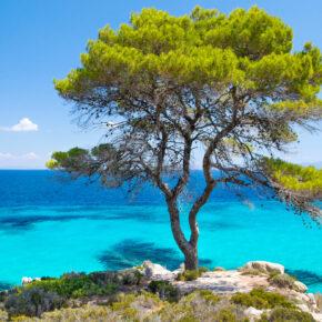 Griechenland: 8 Tage Chalkidiki im 4* Hotel inkl. Flug für 109€