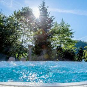 Alpenhotel Aussicht vom Pool