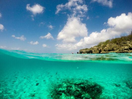 Curacao Scnorcheln