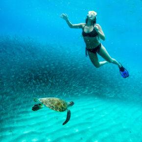 Last Minute in die Karibik: 9 Tage Curaçao mit TOP 3* Hotel, Flug & Transfer nur 599€